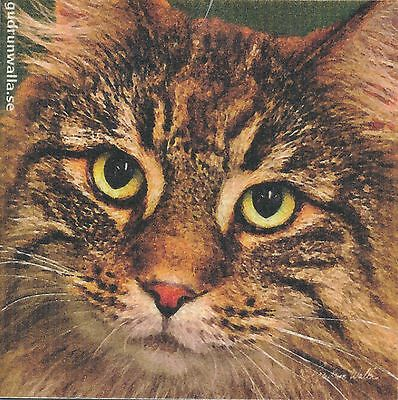 Dish Cloth Norwegian Forest Cat – Gurdun Walla Design