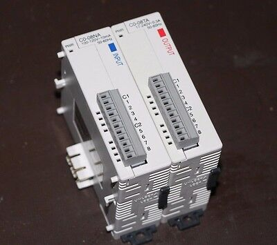 Automation Direct Input Module Model C0-08NA w/ C0-08TA Output Module - AARR