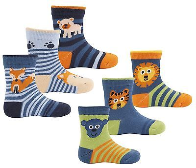 Zest Baby Boys Animal Themed Cotton Rich Socks