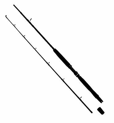 WFT Go North 30lbs 2,10m 200-600g
