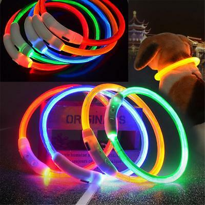 USB Rechargeable Pet Collar LED Flashing Light Band Waterproof Dog Safety