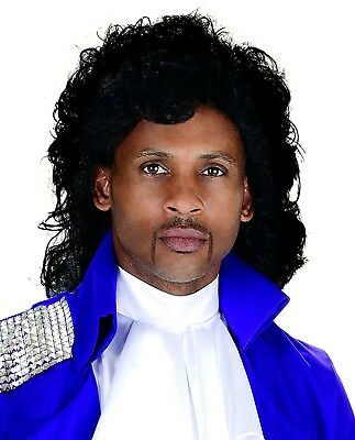 Prince of Pop Men's Tribute Costume Wig Black Jheri Curls Artist Singer