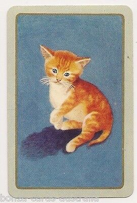 Swap Playing Cards 1 single Vintage Coles Blank Back Ginger Cat Kitten