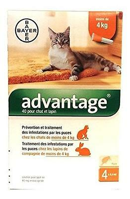 Advantage 40 Chat - De 4Kg 4 Pipettes 106