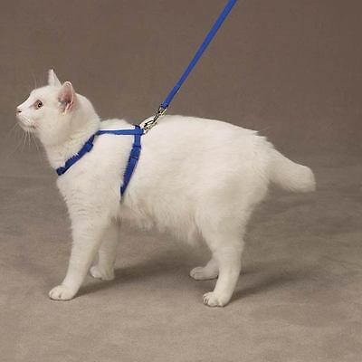 CAT HARNESS by Savvy Tabby  - BLUE