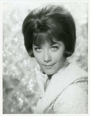 Linda Thorson Pretty Portrait The Avengers Original 1968 Abc Tv Photo