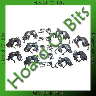 WARHAMMER BIN BITS VAMPIRE COUNTS BLACK KNIGHTS - 5x SKELETAL HORSE BODIES and H