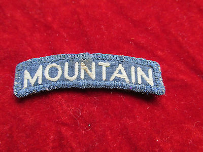 10th  Infantry Division tab  REALLY Premium Quality Mountain Italian Made