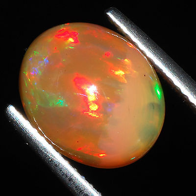 3.45 Cts Natural Rare Ethiopian Solid Opal ~ Vibrant Color Play Flashy Gemstone