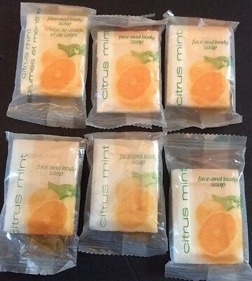 Citrus Mint Face Body Soap Bar Travel Hotel Size Holiday Inn Scent Lot Of 6