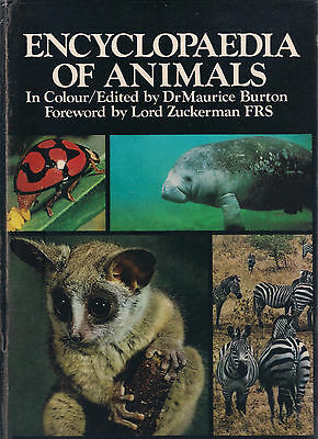 Encyclopedia of Animals by Dr Maurice Burton Hardcover