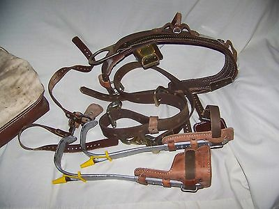 Buckingham Safety Strap Climbing Spikes and Belt Nice
