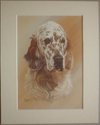 """Reduced - English Setter By Robert J.may Dog Art Card Print Mounted 10 X 8"""" Sale"""