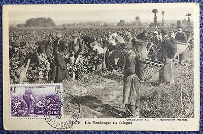 £££ France - carte maximum  1940 - les vendanges - obl Sologne