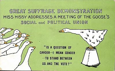 Suffragette Comic. Great Suffrage Demonstration by E.Mack. Miss Hissy. Goose.