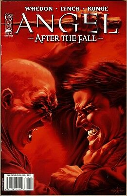 Angel: After The Fall #11 - VF/NM - Garner Cover