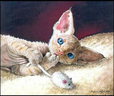 Large Devon Rex Cat Kitten Print From Original Painting By Suzanne Le Good