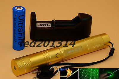 Green 303 Laser Pointer Pen 532nm Burning Lazer Gold 1mw+18650 Battery Charger