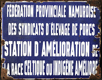 French enamel street sign road plaque Celtic pig farm porc celt Namur Belgium