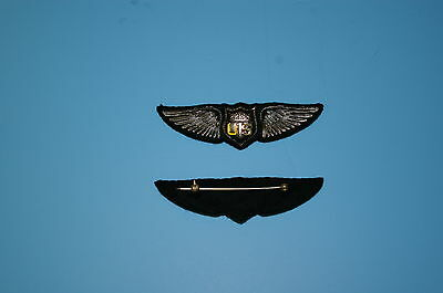 b0429 WW 1 US Army Pilot Wing  Dallas Style IR30C