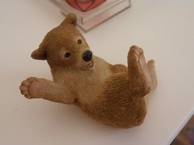 RARE Red Based Early Sherratt and Simpson Wild Bear Cub Rolling Playing on Back