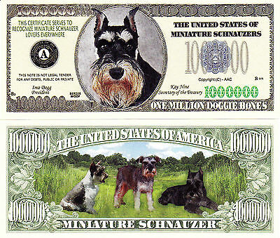 Miniature Schnauzer Mini Dog Novelty Bill # 284