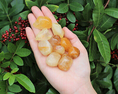1/4 lb Bulk Lot Golden Quartz Tumbled Stones (Crystal Gemstone Healing Reiki)
