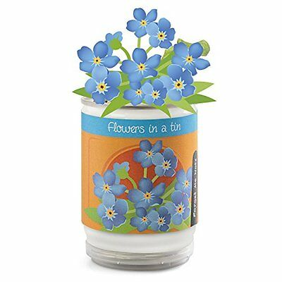 Flowers in a can - Grow your own - Choice of 4 -Everything you need to grow