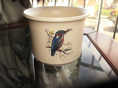 """Small & Pretty Plant Pot Holder Bold Kingfisher And Blue Tit Designs 4"""" High"""