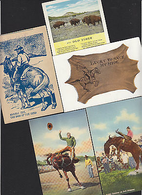 5-Cowboy-Western-Rodeo-Assorted-Antique Postcard Lot