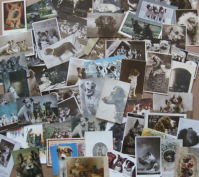 Job Lot of 69x Vintage Postcards of Dogs Mostly pre-1920, Cute, Comic, Puppy etc