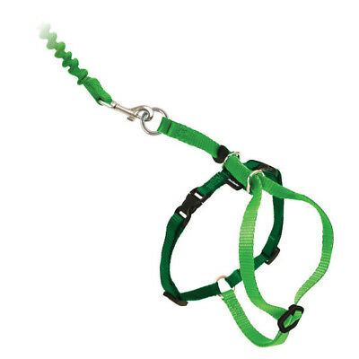 PetSafe COME WITH ME KITTY Cat Harness and Bungee Leash Green Large