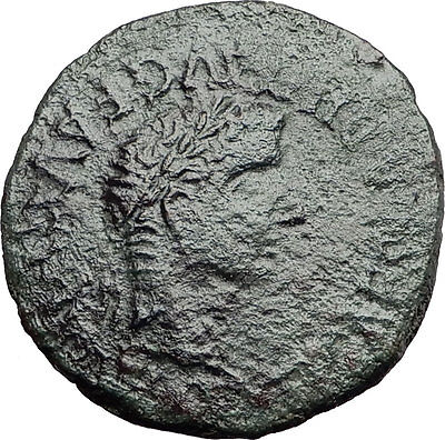 TIBERIUS 14AD Calagurris Spain Ancient Roman Coin BULL of Biblical Times i57884