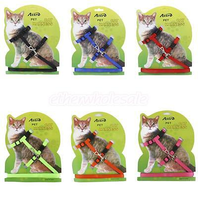 Ceinture Collier Harnais Corde Sangle En Nylon Réglable pour Chat Chaton