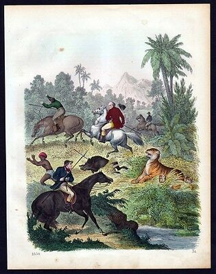 1856 - Tigerjagd Indien India Tiger Jagd hunting Lithographie lithograph