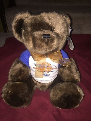 *NSYNC 2002 Challenge For The Children Collectible Teddy Bear