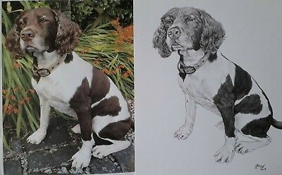 PET PORTRAIT Custom Commission Original Pencil Hand-Drawing from your photo