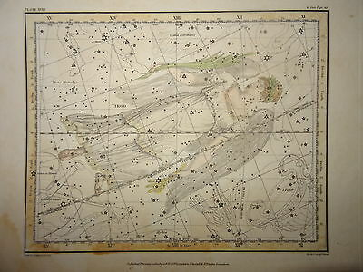 Engraving Astronomy Canis Astrology Space Sun Mathematics Science Moon 1820