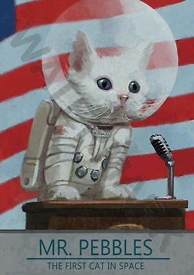 Mr.pebbles The First Cat In Space A3 Art Print Photo Poster Amk3095