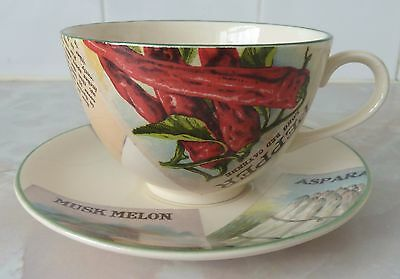 Poole Pottery Seed Packets Breakfast Cup & Saucer ~ Excellent