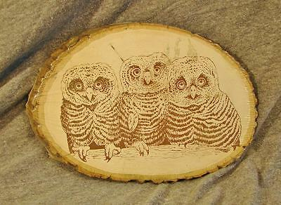 NEW Susan Scheewe Furry Critters Basswood OWL Craft Paint Color or Woodburning