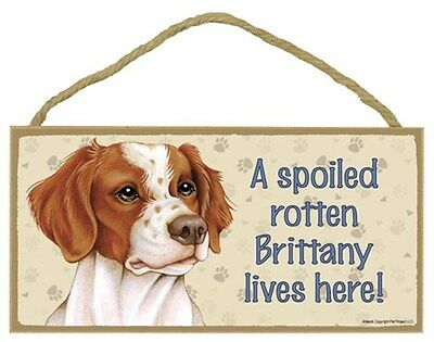 Spoiled Rotten Brittany Dog 5 x 10 Wood SIGN Plaque USA Made