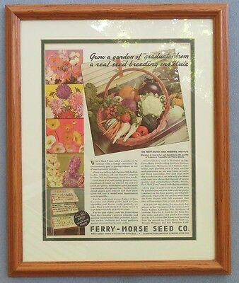 Ferry-Morse Seed Company Advertisement 1936 Professionally Framed in Oak