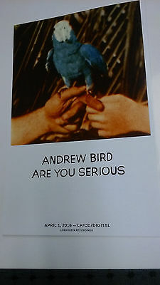 POSTERS by ANDREW BIRD are you serious for the bands new release tour album / cd