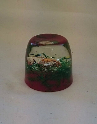 STUNNING Vintage Collectable RARE UNUSUAL DECORATIVE CRAB PAPERWEIGHT ORNAMENT