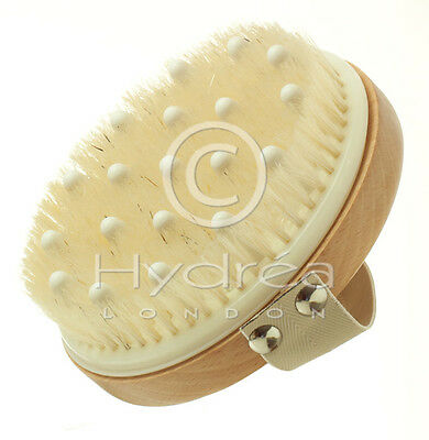HYDREA DETOX MASSAGE BRUSH~Exfoliate for Healthy/Smooth Skin/ Improve Cellulite