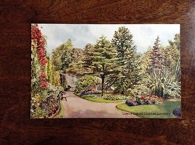 Guernsey, Artist Signed C T Howard Lower Candie Gardens Exceptional Condition.