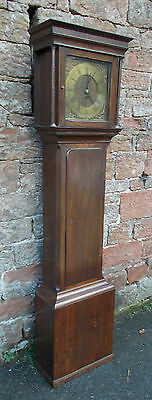 ANTIQUE Grandfather LONGCASE CLOCK Oak CASE With FUSEE Movement DRINKS Cabinet