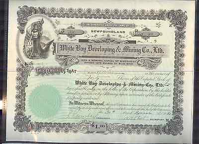 1936 White Bay Developing & Mining Co. Newfoundland Stock Certificate C4