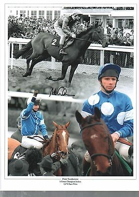 Peter Scudamore  authentic hand signed horse racing photo AFTAL dealer M477